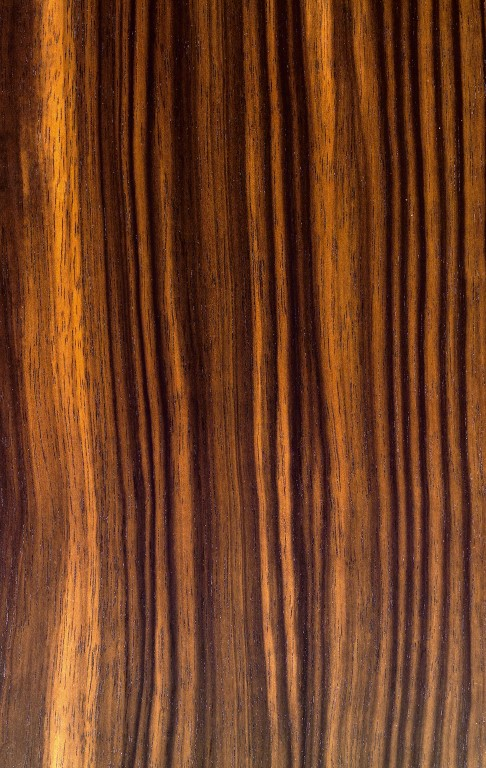 eb ne macassar furnier schorn groh furniere veneers. Black Bedroom Furniture Sets. Home Design Ideas